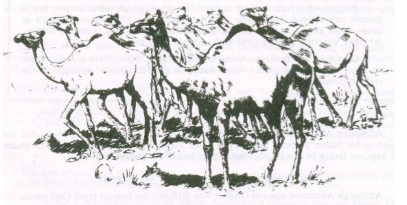 This image has an empty alt attribute; its file name is Camels.png
